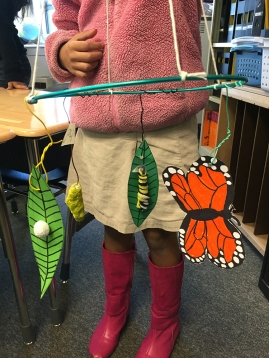 3. Life Cycles of Insects Art: A Mobile about the Complete metamorphosis of the Monarch butterfly (3 sessions)