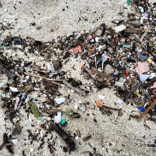 Plastic debris on Isabella, Galapagos Island, August 2016.