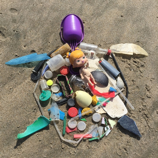 Sea turtle made with plastic debris found on Santa Cruz beach, January 2016