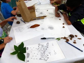 Day 1 - Back to the studio, sketching elements from nature at the Barn Studio