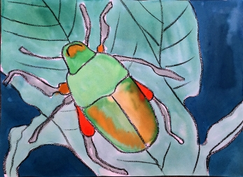 5. Armored Tanks of the Insect World Art: Watercolor (1 session)