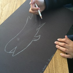 Student drawing one of the endangered marine species.