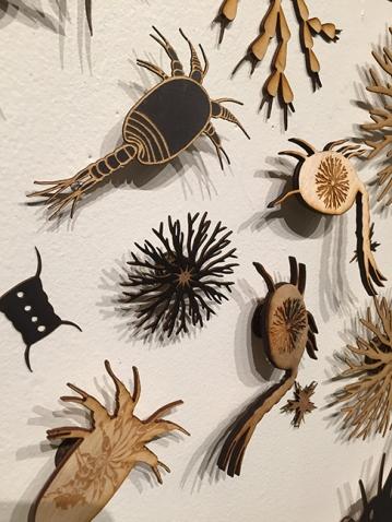 Michele Guieu Plankton Installation at Tech Shop San Jose