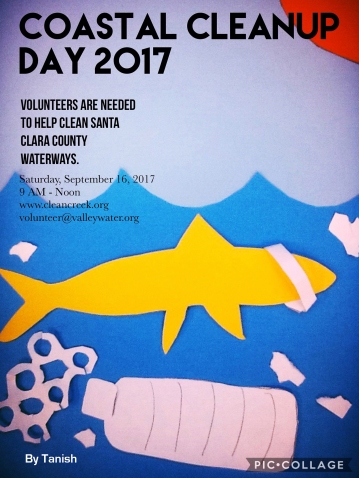 Coastal Cleanup A and D camp 2017 01-02-7