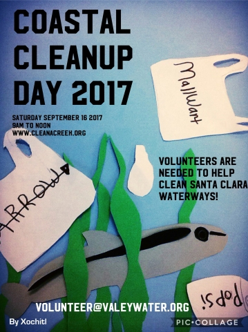 Coastal Cleanup A and D camp 2017 01-02-8
