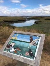 The Palo Alto Baylands Nature Preserve