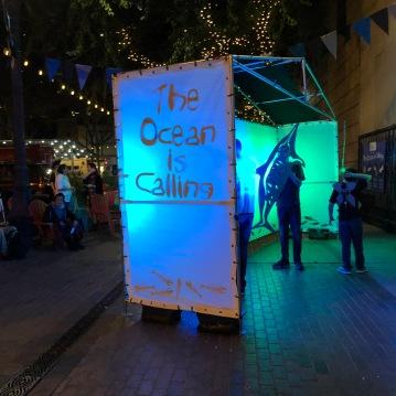 the ocean is calling IMG_0757