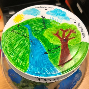 The Water Cycle on the lid.