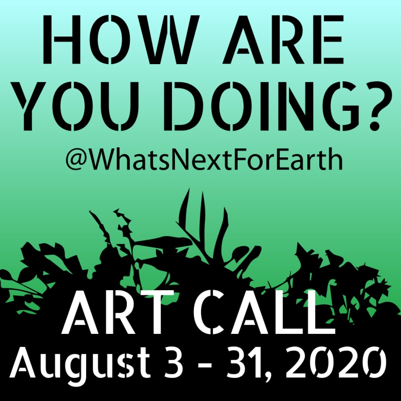 What's Next For Earth How Are You Doing Art Call